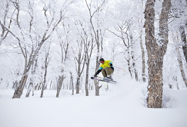Pavel skiing in the Yamabiko trees yesterday.