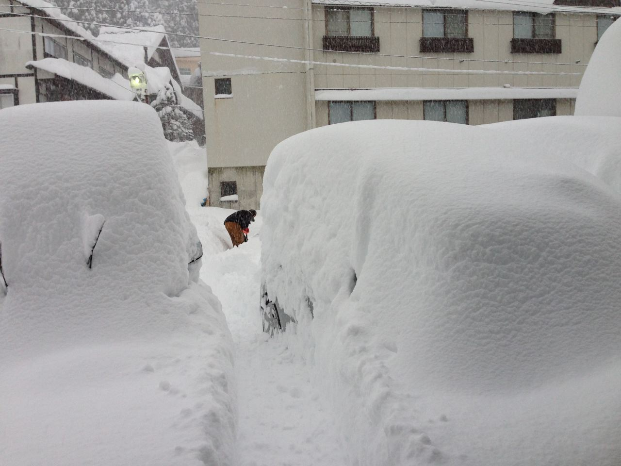 Cars going deep in Nozawa