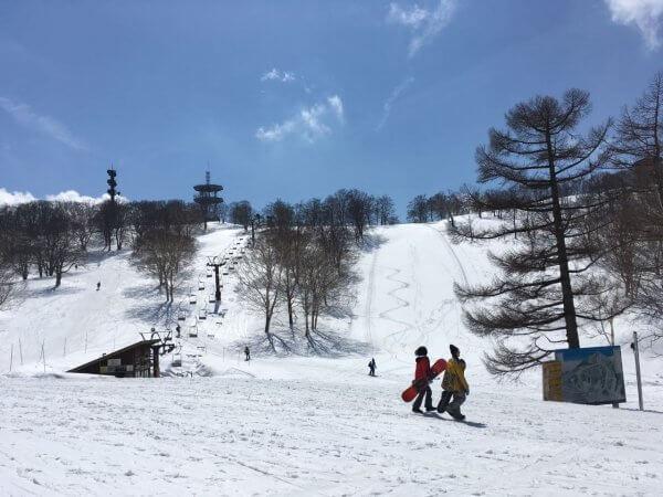 Spring Slide Nozawa