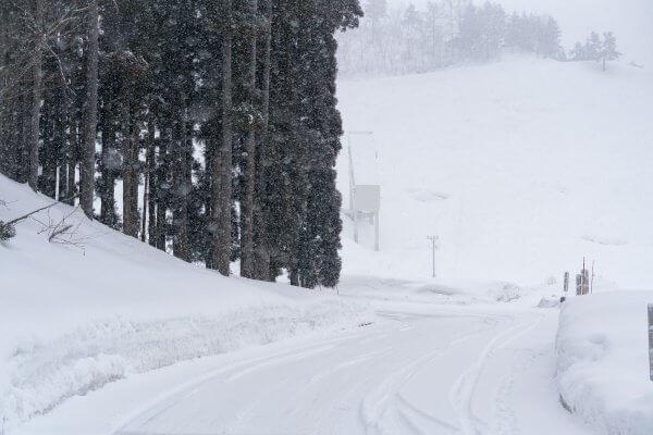 Nozawa Snow Report Wednesday 21st of February 2018