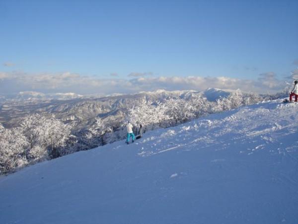 Blue Bird Day at Yamabiko on top of Nozawa Onsen Ski Resort