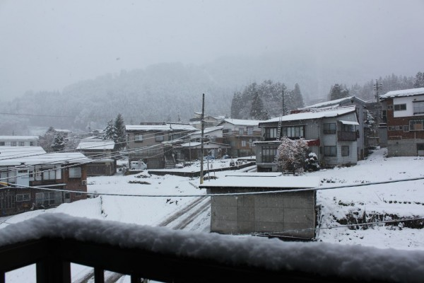 20cm overnight in Nozawa looking like a December to remember...