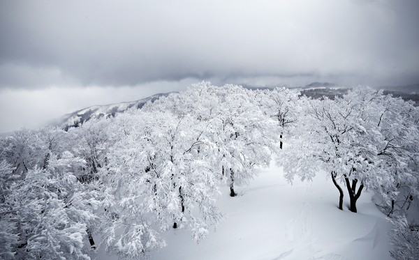 A storm front moves over the upper area of Nozawa Onsen yesterday.