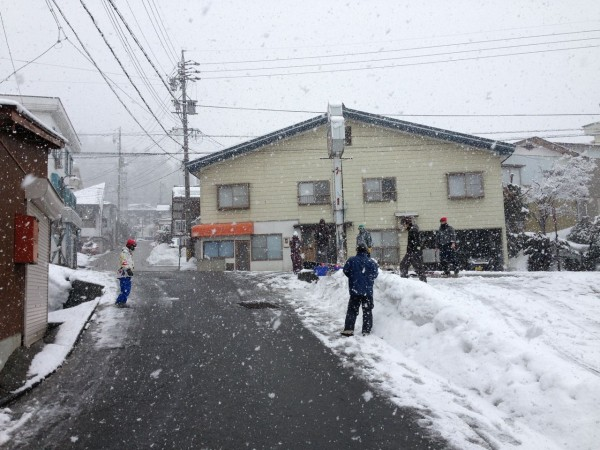 Falling like saucers from the sky this morning in Nozawa