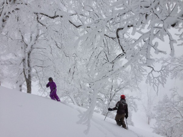 Gab and Luke from Nozawa Holidays have seen more powder days than most. They reckon yesterday was one of the best..