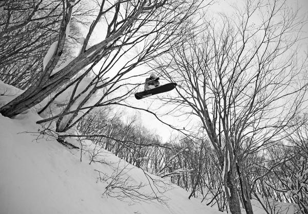 Nozawa tree drop.