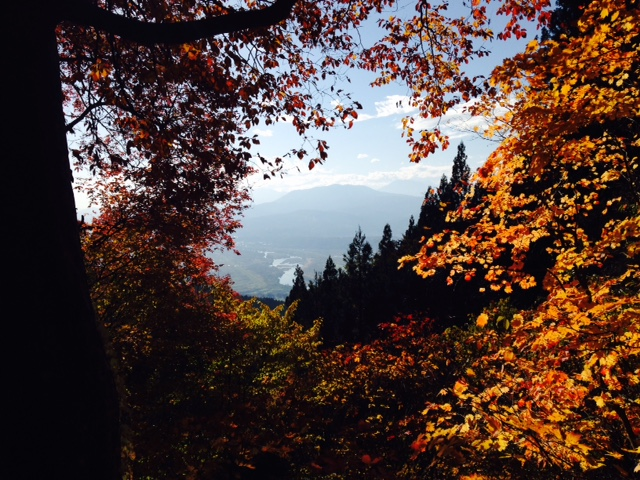 Has been a beautiful Autumn in Nozawa Onsen. Biking, Hiking, and Onsening!