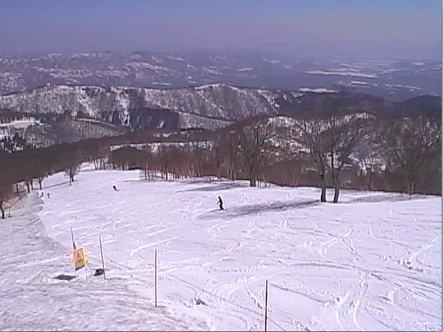 Web cam shot of Yamabiko this morning get the Tshirt on it is going to be a lovely spring day
