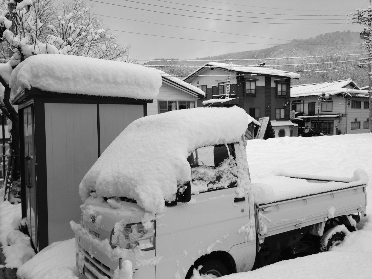 Great start to the year in Nozawa Onsen with 20cm of Fresh snow being delivered