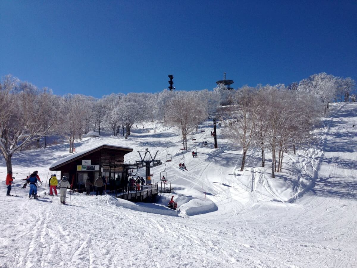 When you get off the gondola at the tiop of Yamabiko on a bluebird da you would be forgiven for thinking you are in heaven!