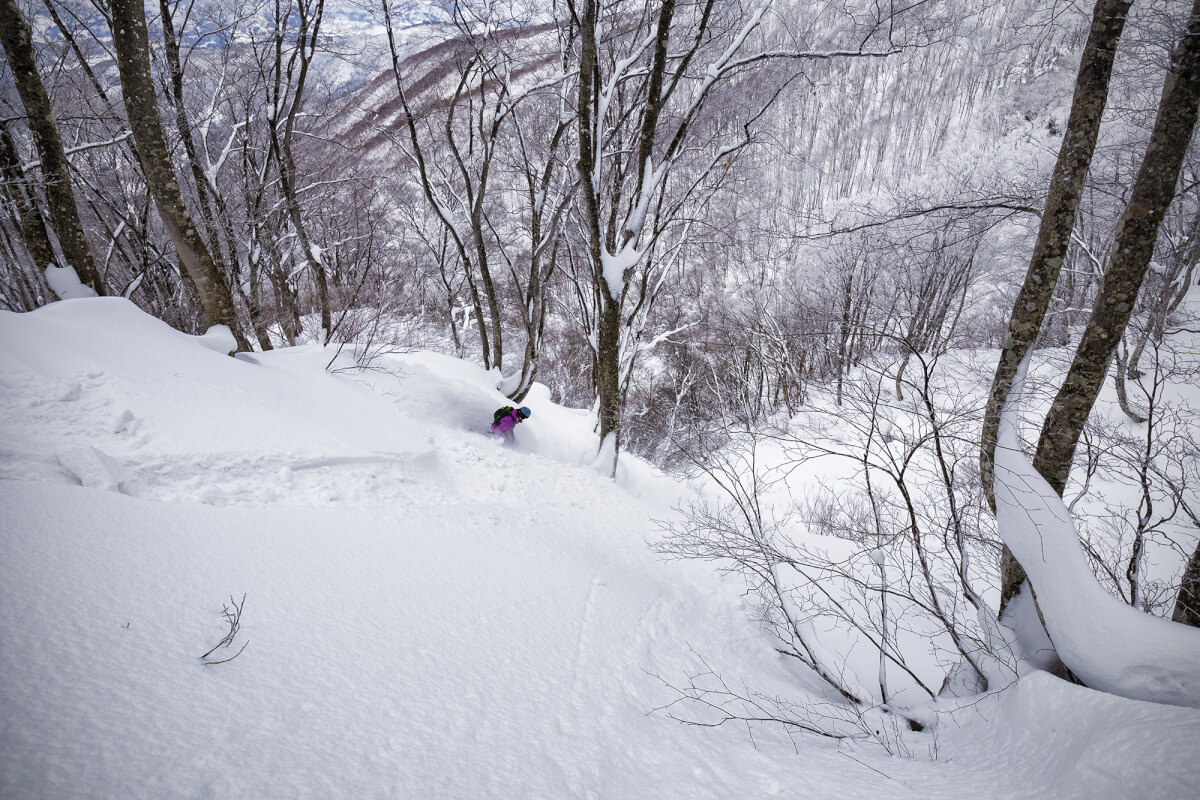 The leftovers. Kelsey finds untracked powder two days ago. Now we wait..