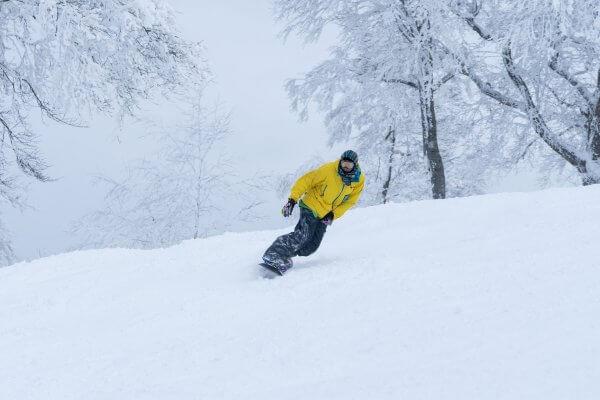 Nozawa Snow Report Wednesday 24th of  January 2018