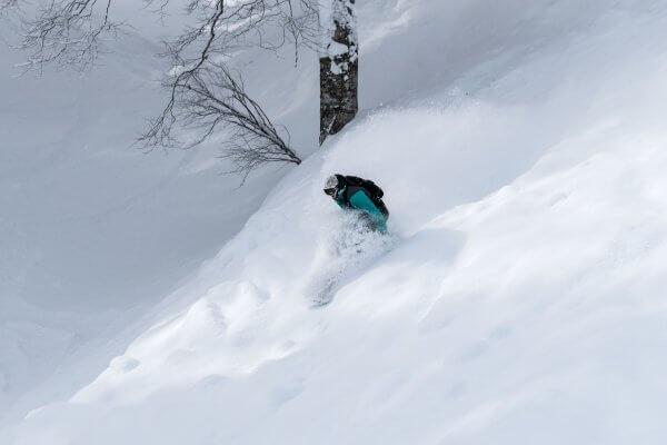 Nozawa Snow Report Saturday 10th of February 2018